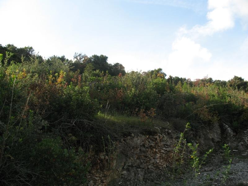 Участок на полуострове Луштица с красивым видом