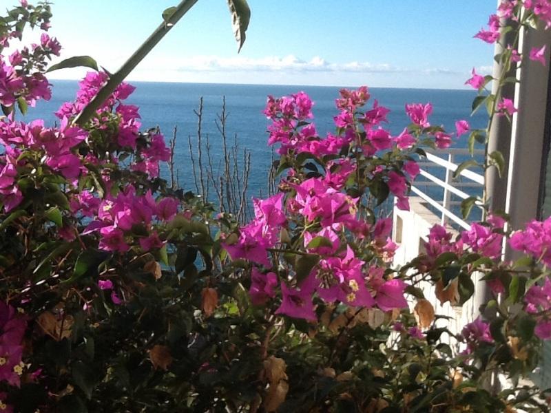 Дом с красивым видом на море и садом