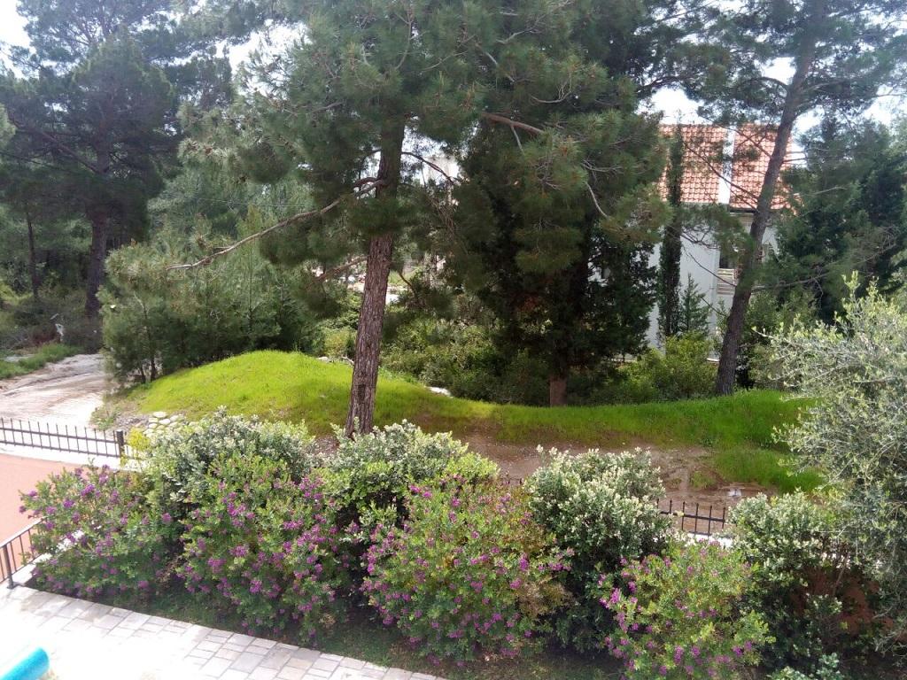 Дом с бассейном в зеленом тихом месте