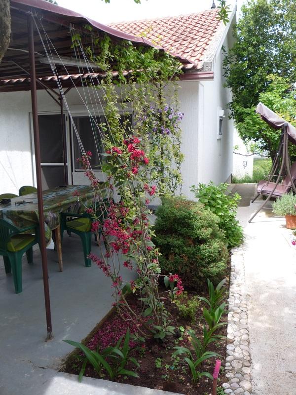 Уютный дом с фруктовым садом на первой линии