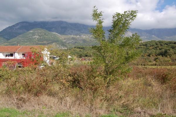 Урбанизированный участок в Радановичи