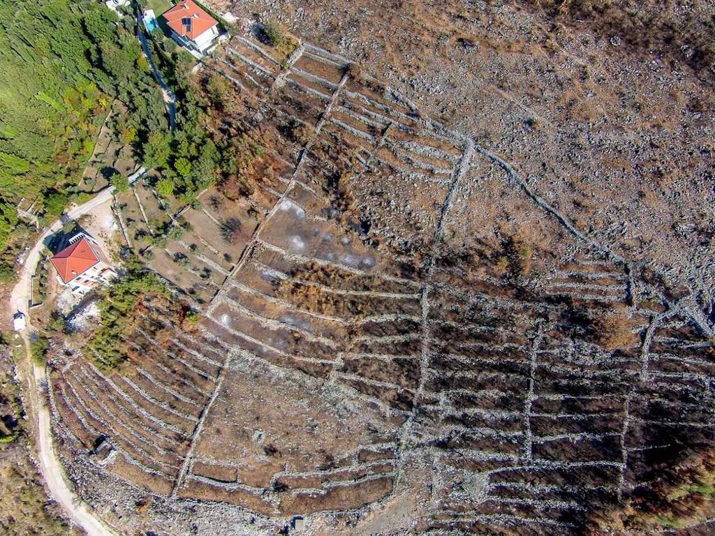 Участок с проектом строительства двух вилл в Режевичи