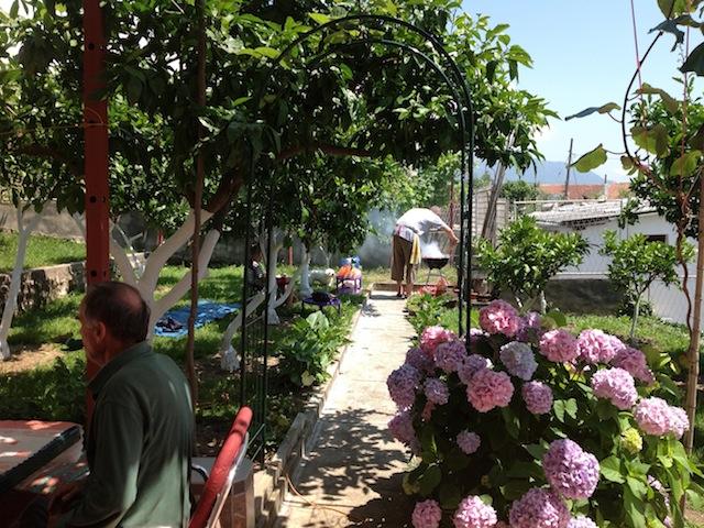 Новый семейный дом с фруктовым садом